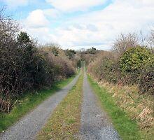 Country road by John Quinn