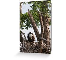 Someone to Watch Over Me Greeting Card