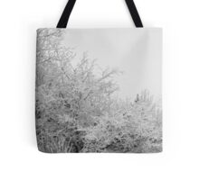 Frost Coated Trees Tote Bag