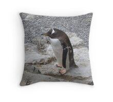 penguin on the rocks Throw Pillow