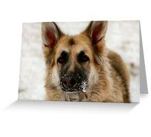 Are you gonna toss it? Greeting Card