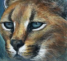 Lynx in pastel land by Tom Godfrey
