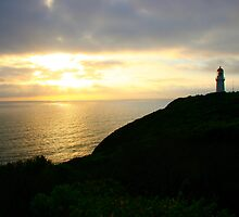 Cape Schanck Lighthouse by Dave Law