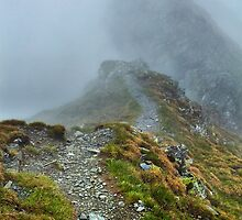Misty mountains and hiking trail by naturalis