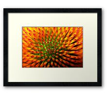 Nature's Candy Corn Framed Print
