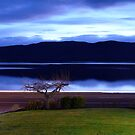 On the tranquil shores of Lake Te Anau by Magee