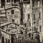 Siena by Sigrid  Kleinecke