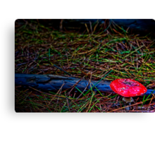 Anger in the Forest Canvas Print
