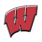 University of Wisconsin by reclaimedforyou
