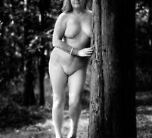 Fine Art Nudes by G. David Chafin