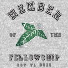 Member of the Fellowship by icedtees