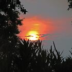 Secret Sunset by Leslie Wood