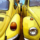 VW Beetle Twins by mistertof