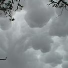 Mammatus with microburst by didjman