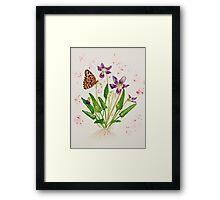 Laced Fritillary & Arrowhead Violet Framed Print