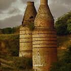 Bottle Kilns - Portland NSW by Deborah McGrath