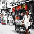 The colours of India by indiafrank