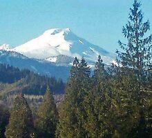 """""""Mount Baker"""" by Lynn Bawden"""