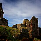 Castle Sinclair Girnigoe by bidkev