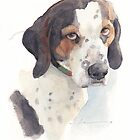Treeing walker coonhound watercolor by Mike Theuer
