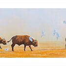 Cape Buffalo and Egrets by defineart