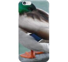 HEAD TUCKED UNDER HIS WING - POOR THING! iPhone Case/Skin