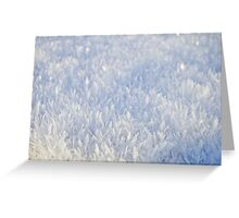 Winter snow texture 2 Greeting Card