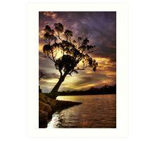 River Redgum Sunset Art Print