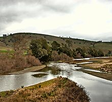 Murrumbidgee River by GailD