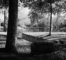 Pond with Diving Platform by AlixCollins