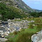 Llanberis Pass by Trevor Kersley