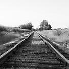 Michigan cornfield tracks. by buddyboy