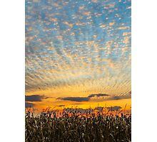 Harvest Sunset Photographic Print