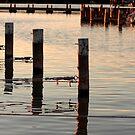 Docks by Zeanana
