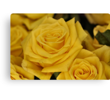 Yellow Rose of Iowa  :) Canvas Print