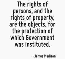The rights of persons, and the rights of property, are the objects, for the protection of which Government was instituted. by Quotr
