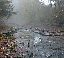 Foggy Creek by Traveler Wendell