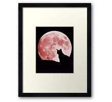 Cat looking at the moon Framed Print