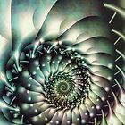 Spiralling by Sally Hunter
