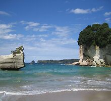 Cathedral Cove by Luke and Katie Thurlby
