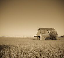Barn beside old Route 66. Odell. Illinois. by Alan Copson
