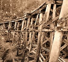 Sepia Trestle by Rachael Taylor