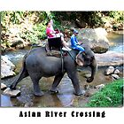 Asian River Crossing by Keith Richardson