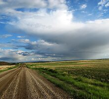 Country Road by Leanna Lomanski