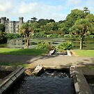 Johnstown castle view 3 by John Quinn
