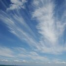 Wispy Clouds by Samantha  Goode