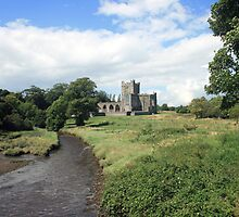 Tintern Abbey view 3 by John Quinn