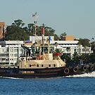 Newcastle Harbour - Svitzer Hamilton Tug by Phil Woodman