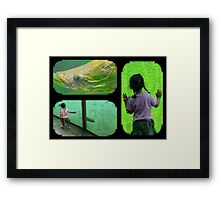 Big fish and the girl... Framed Print