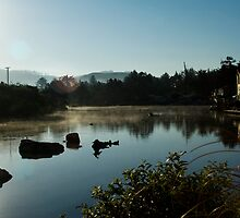 morning mists by heylisa